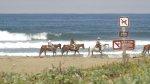 jazda konna nad morzem